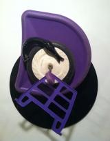<h5>Black Hole Purple Swan </h5>